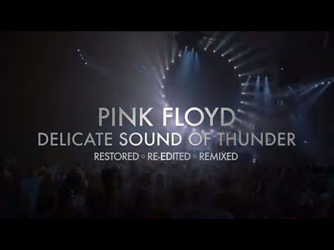 Pink Floyd's Delicate Sound Of Thunder - Out November 20th