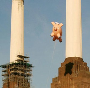 Liftoff! Those following the Simpson 'spider pig' saga will be relieved to know the porker was launched on 11 Dec without mishap.