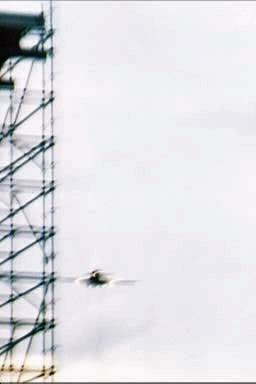 Roger's tour plane buzzes the show. (Pic thanks to Brian McGilvrey)